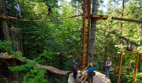 Forest Adventures High Rope AND Archery Park